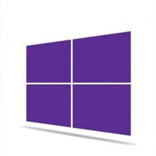 Microsoft WINPRO 10 SNGL OLP NL Legalization (FQC-09478)